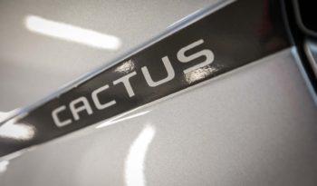 Citroen Interni C4 Cactus Shine Cumulus Grey Keyless Logo
