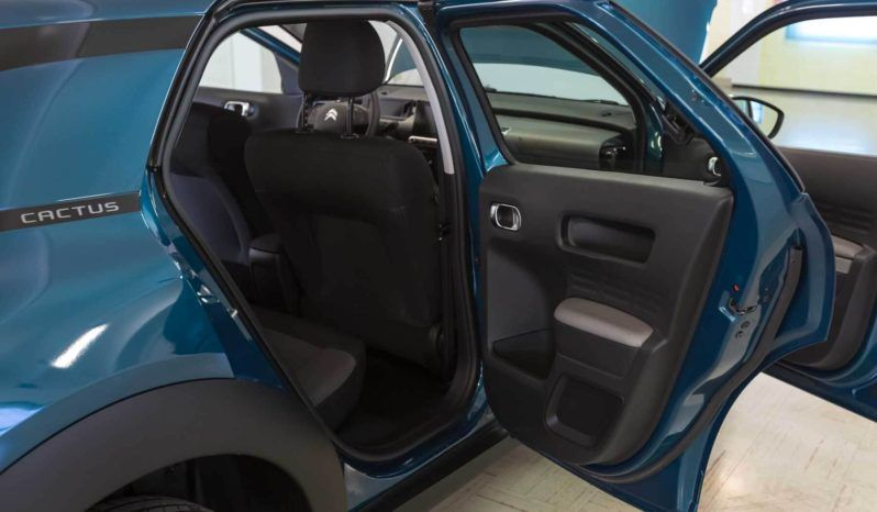 Citroen Interni C4 Cactus Feel Emerald Blue Usata Porta